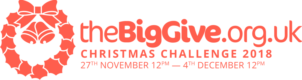 red logo of the Big Give